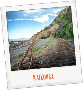 Kaikoura NZ