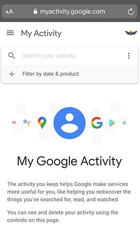 open safari and visit google activity